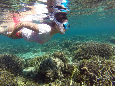 DIVING IN MADAGASCAR: INDIMENTICABILE